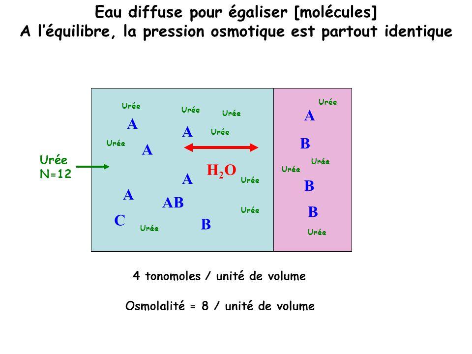 Eau diffuse pour égaliser [molécules]
